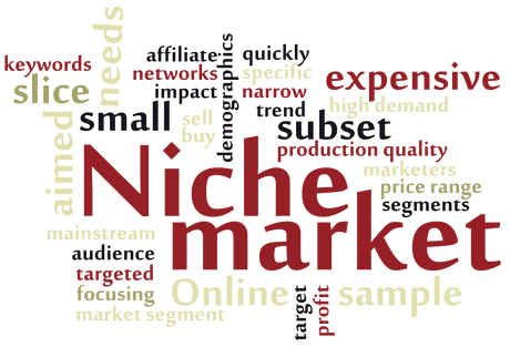 niche market bisnis online dari rumah